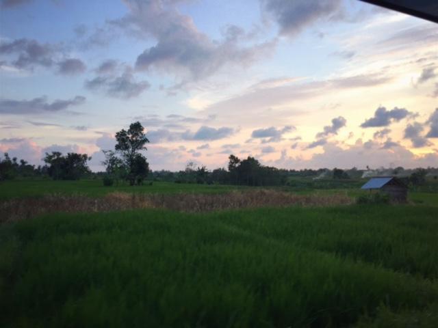 3rd day view.jpg