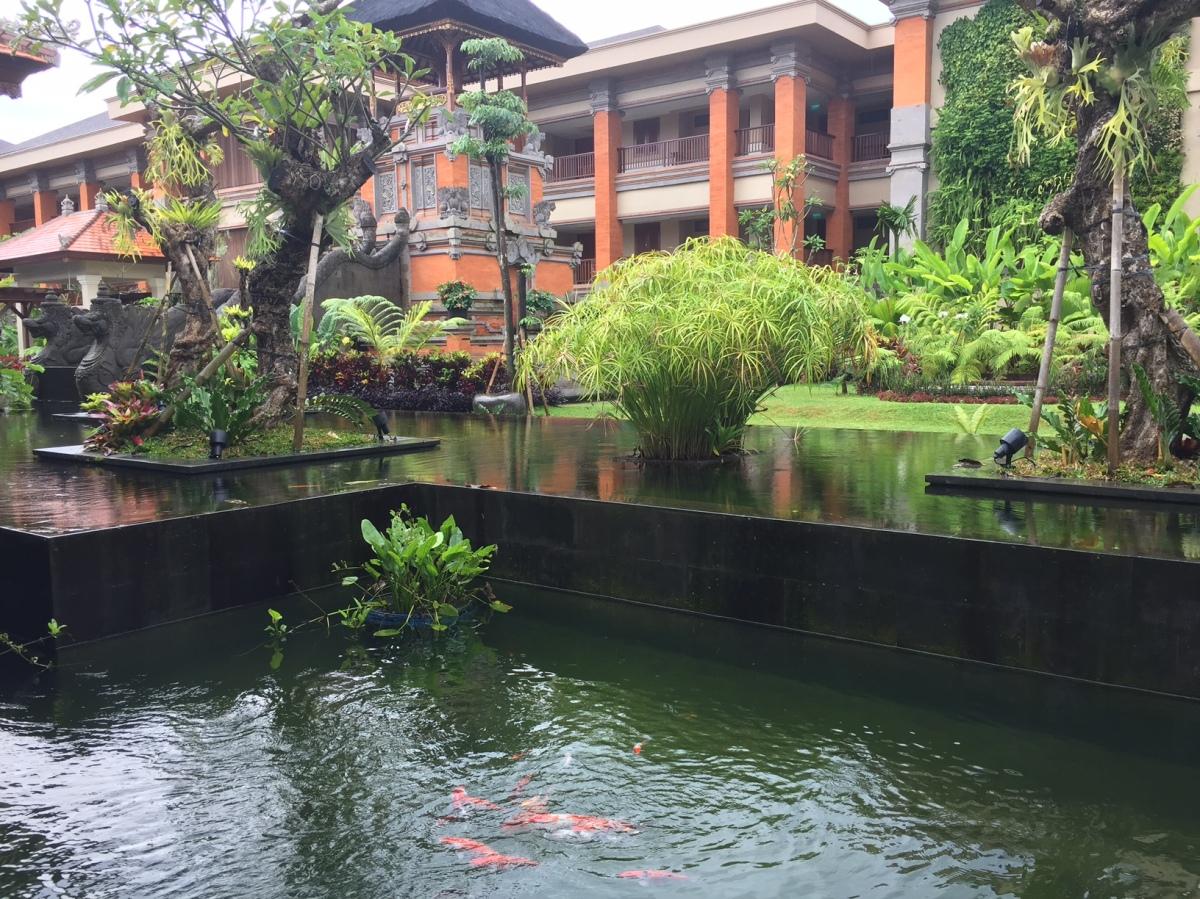 On Bali islandpart-2