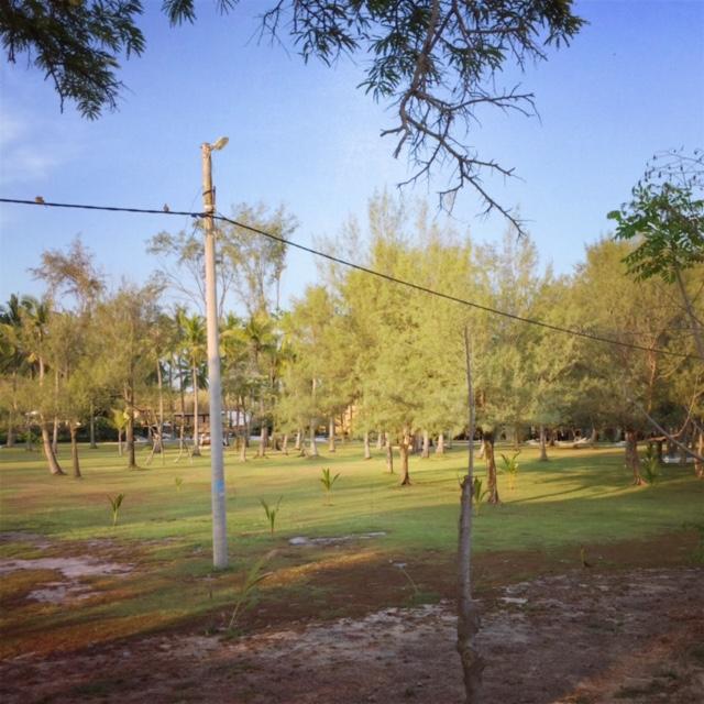 green view.jpg