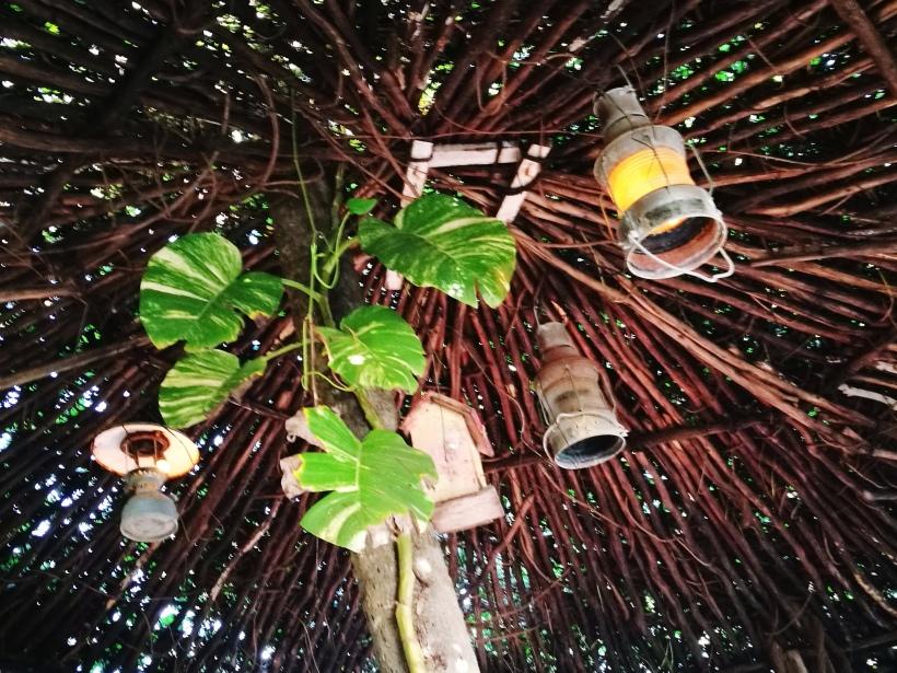 natural tree art
