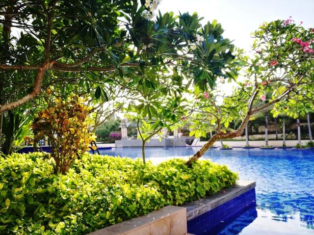 landscaping pool.jpg
